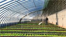 现代农业产业园申报政策解读