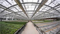 现代农业产业园规划成功案例