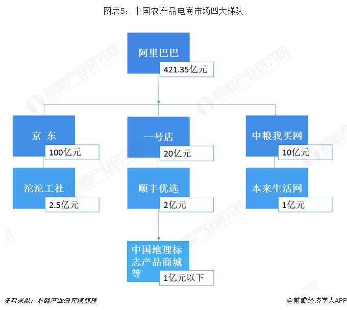 图表5:中国农产品电商市场四大梯队