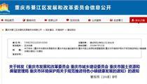 重庆市规范特色小镇健康发展意见