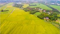 休闲农业园区规划之用地规划