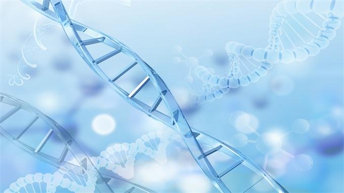 华大基因回应裁员:聚焦两大业务板块 其它个别业务开展小范围人员优化