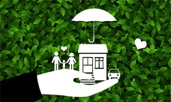 扎心报告:一季度家庭总资产减少!