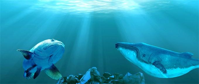 """""""度假天堂""""变""""垃圾地狱""""!巴厘岛黄金海岸线每天清理100吨海洋垃圾"""