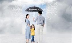 2018年<em>人寿保险</em>行业市场现状及发展趋势分析 消费升级推动产品及服务多元化发展