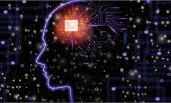 """更像人?AI或许已经学会了人类和动物独有的""""数字感"""""""
