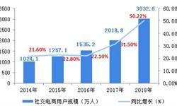 2018中国社交电商行业发展现状和市场前景分析,11亿微信用户购买能力即将被逐渐释放【组图】