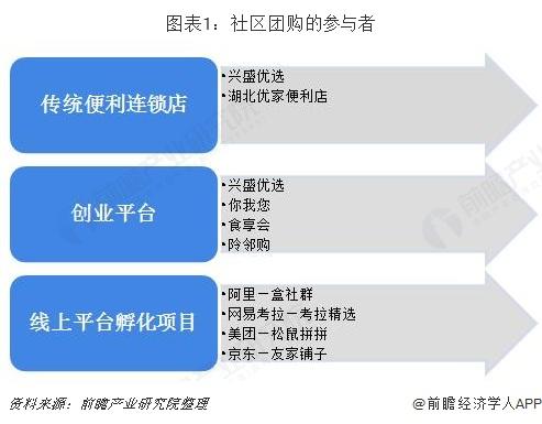 图表1:社区团购的参与者