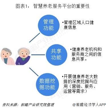 图表1: 智慧养老服务平台的重要性