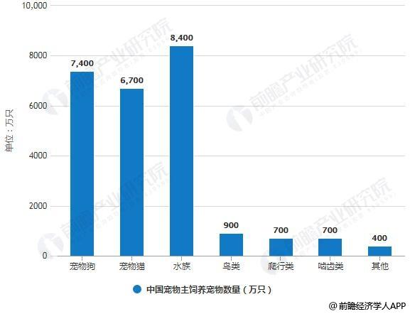 2018年全年中国宠物主饲养宠物数量统计情况