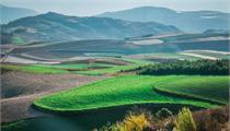 现代农业园发展现状及优秀案例