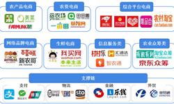 2018年中国农村电商市场竞争格局分析  阿里份额近7成,一超多强格局基本形成