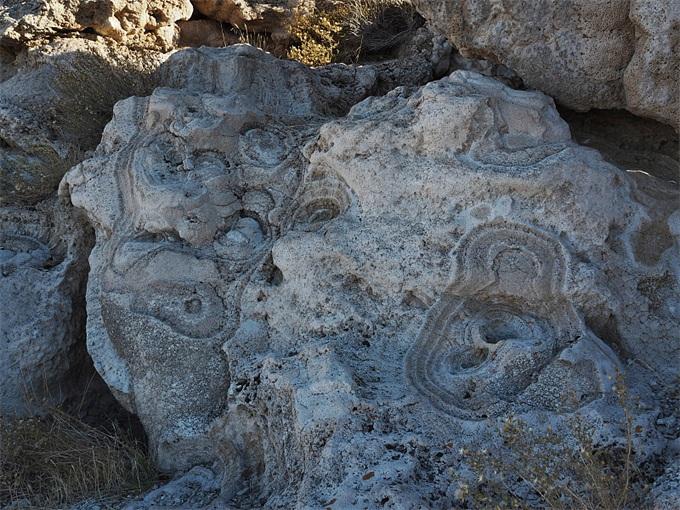 火星上的潜在生命线索:像面条一样的古代丝状岩石