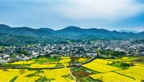 自然资源部印发通知:加强村庄规划 促进乡村振兴