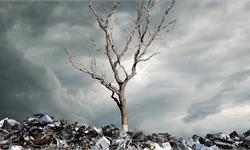 """100吨!印尼洋垃圾退美国 坚决不当欧美国家的专属""""垃圾场"""""""