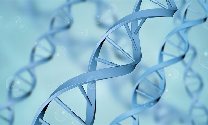 银丰生物科技园项目