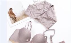 """2019年中国女士内衣行业市场分析:本土品牌内外交困,标杆新产品成为发展""""王牌"""""""