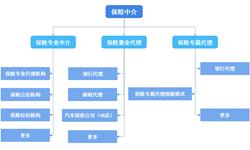 2018年中国<em>保险</em><em>中介</em>行业市场分析与发展趋势 <em>保险</em>专业<em>中介</em>机构整体专业水平不高【组图】