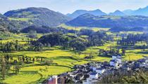 陕西将建12个农村特色产业小镇(附名单)