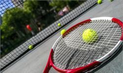 为亚洲争光!李娜荣登网球名人堂名单 至今保持亚洲排名纪录