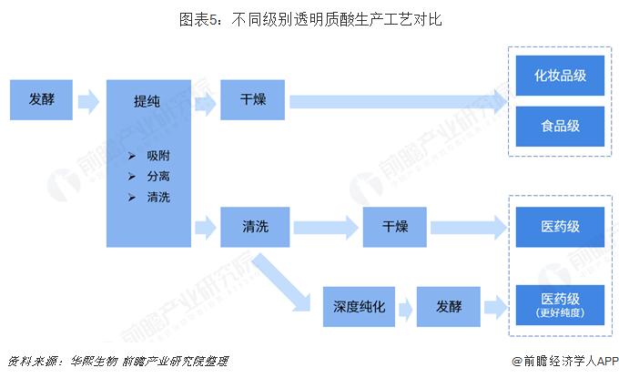 圖表5:不同級別透明質酸生產工藝對比