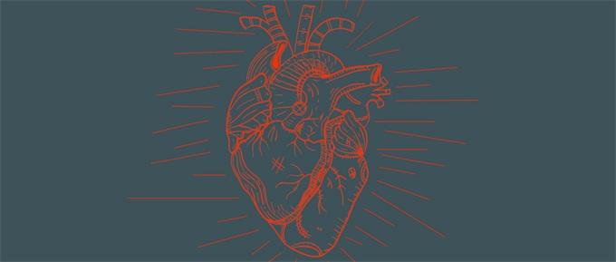3D打印出可工作心脏组织 结构精细度高达20微米可嵌入活体细胞
