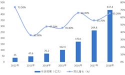 2018年中国公有云市场现状与发展前景分析 IaaS占据市场主导地位【组图】