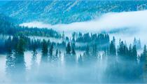 贵州森林旅游发展规划出台 推进森林康养基地申报