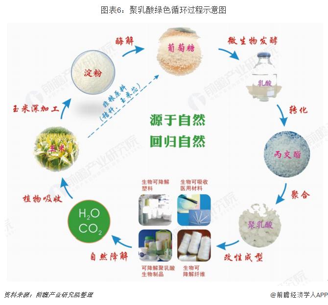 图表6:聚乳酸绿色循环过程示意图