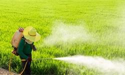 2019年中国农药行业市场现状及发展趋势分析 面临行业大洗牌,绿色发展浪潮汹涌
