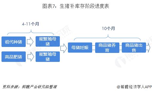图表7:生猪补库存阶段进度表