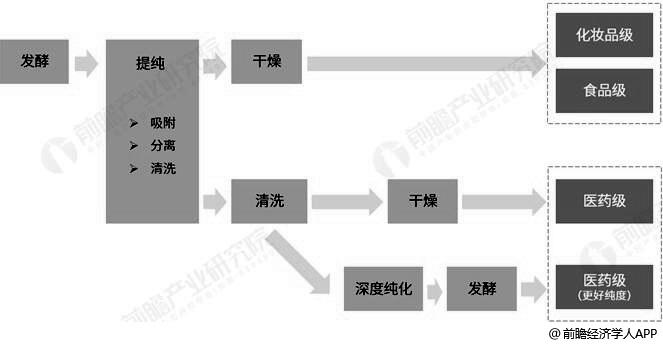 不同级别透明质酸生产工艺对比情况