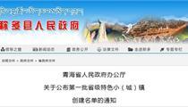 青海省第一批省级特色小(城)镇创建名单公布