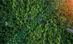 """人间炼狱!亚马逊雨林大火已连烧21天 """"世界动植物王国""""遭浩劫"""