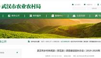 武汉市乡村休闲游(赏花游)项目奖补办法(2019-2020年)
