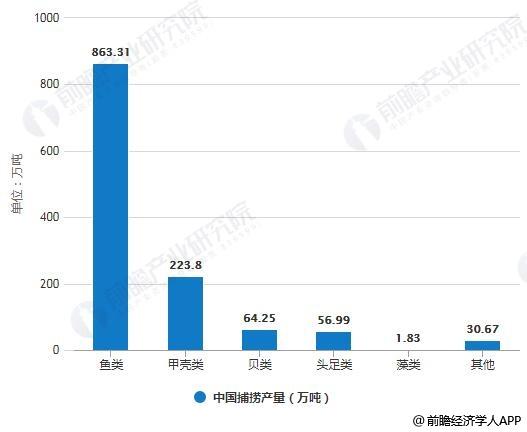 2018年中国捕捞产量统计情况