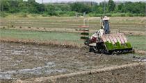 国家<em>现代农业</em><em>产业园</em>区创建条件及流程解读