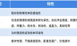 2019年中国<em>轨道交通</em><em>装备</em>用涂料行业现状与发展趋势 未来市场需求将继续增长【组图】