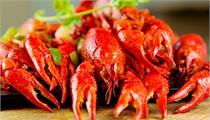 小龙虾产业发展迅猛 产业化经营是未来趋势