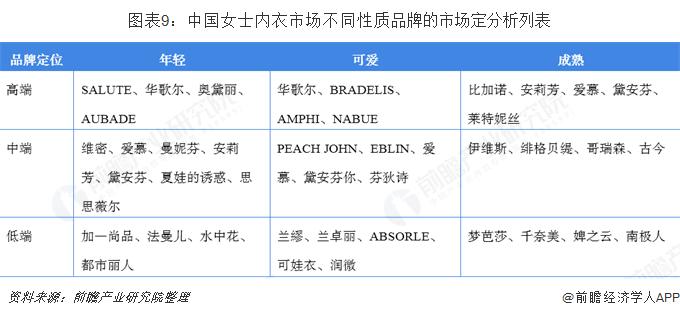 图表9:中国女士内衣市场不同性质品牌的市场定分析列表