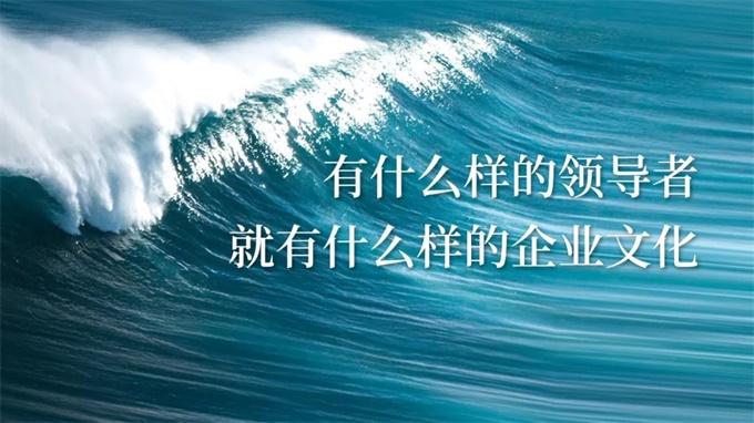 陈春花:有什么样的领导者,就有什么样的企业文化