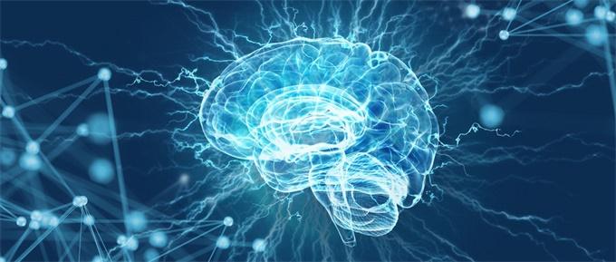 年轻时被降薪,到中年大脑会更易衰老?新研究提出了这一可能