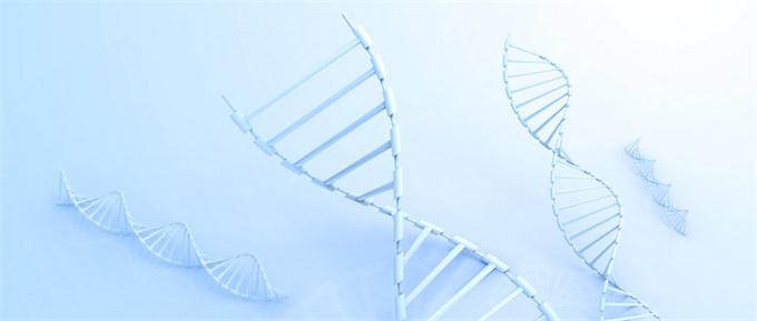 """基因工程培育出""""超级苍蝇"""":不仅吃得了有毒植物 还能使捕食者呕吐"""