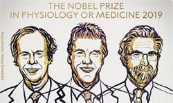 重磅!2019年諾貝爾生理學和醫學獎揭曉