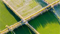 <em>现代农业</em><em>产业园</em>创建方案参考模板