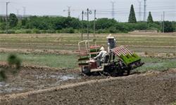 AI+種植:AI如何賦能智慧農業?