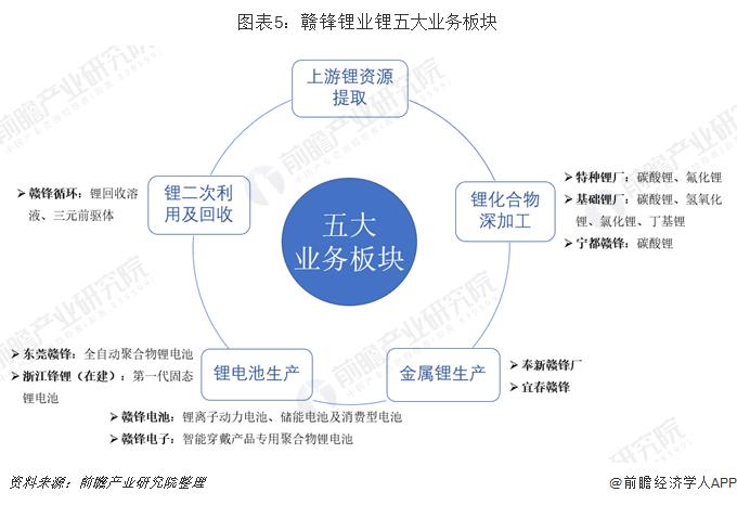 图表5:赣锋锂业锂五大业务板块