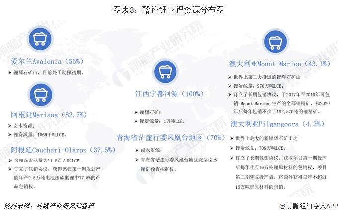 图表3:赣锋锂业锂资源分布图