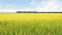 农业农村部:五项政策措施加快田园综合体建设