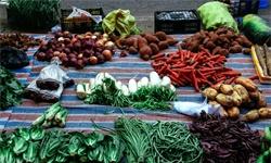 2019年中国<em>农产品流通</em>行业市场现状及发展趋势分析 <em>农产品</em>绿色物流将成为新增长点